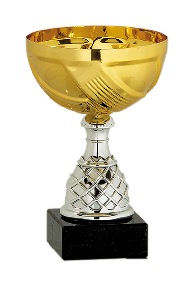 Pokal Silber/Gold